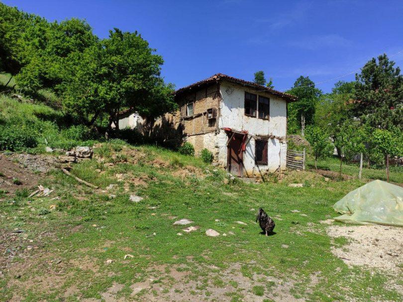Стара кућа породице Станковић